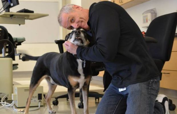 Dog Used to Sniff Out Thyroid Cancer