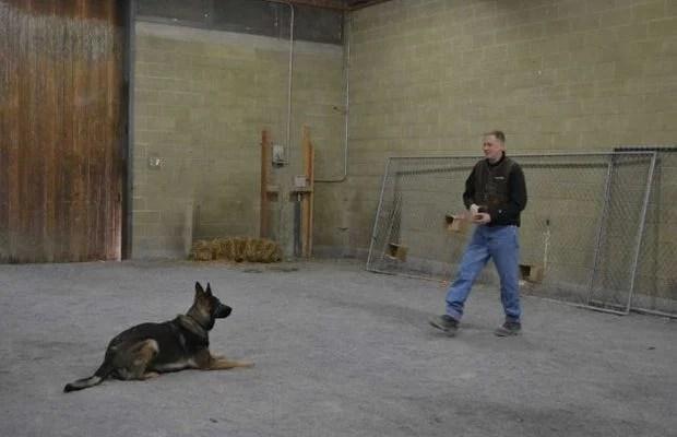Police Officer Helps Start Dog Training Association