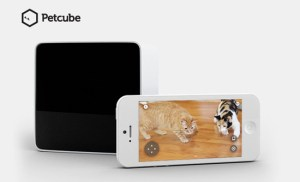 Petcube Lets Dog Owners Interact With Their Pets Remotely