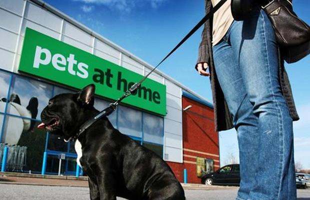 Pets at Home Stores Under Fire for Grooming ServicesPets at Home Stores Under Fire for Grooming Services
