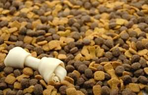 Senators Want FDA to Crack Down on Pet Food Oversight