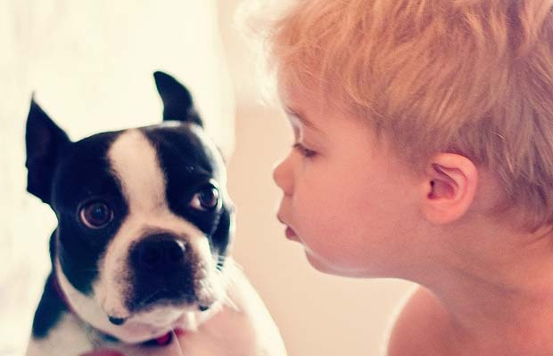 Situations When Dogs Hate Their Humans
