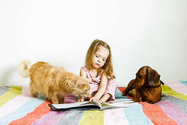 A cute child reading books with dogs