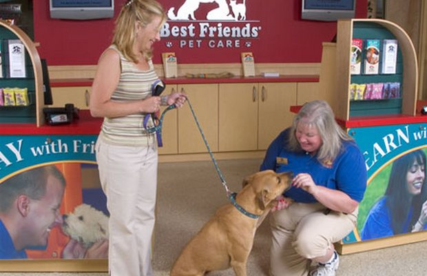 Petplan and Total Pet Care Partner to Offer Better Pet Insurance to Owners