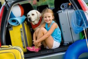 Revitamal Brings Anti-Aging Science to Dogs