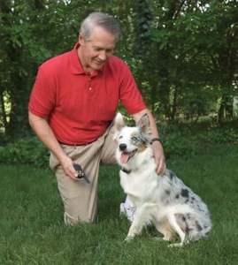 Best Alternatives to Dog Shock Collars