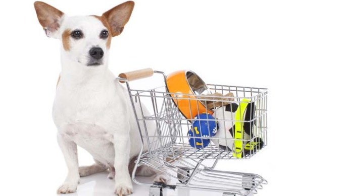 How to Get Free Stuff for Dogs