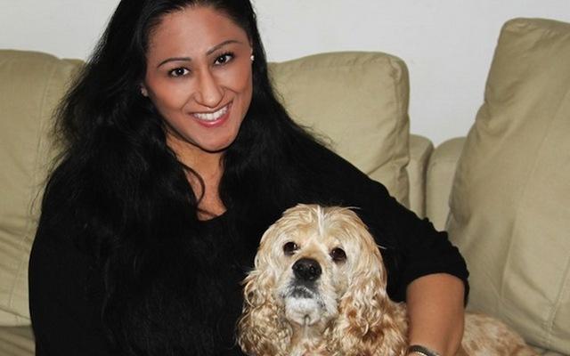 JoJo Modern Pets Sells Designer Pet Products