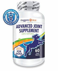 Doggone Best Products Releases New Canine Joint Supplement