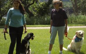 Mother Daughter Team Splits Dog Business Into Two Sister Companies
