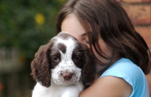 The Healing Power of Dogs