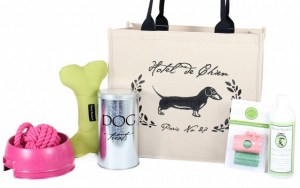 Harry Barker Manufacturers Eco-Friendly Dog Products