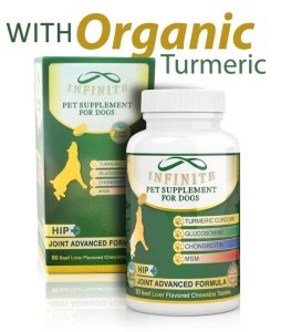 Why Your Dog Needs These Pet Supplements