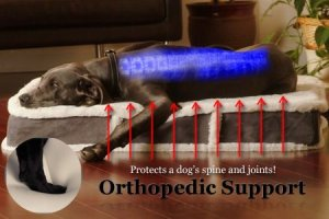 Picking the best dog bedfor large dogs for joint support