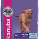 Best Puppy Food Brands for Dogs