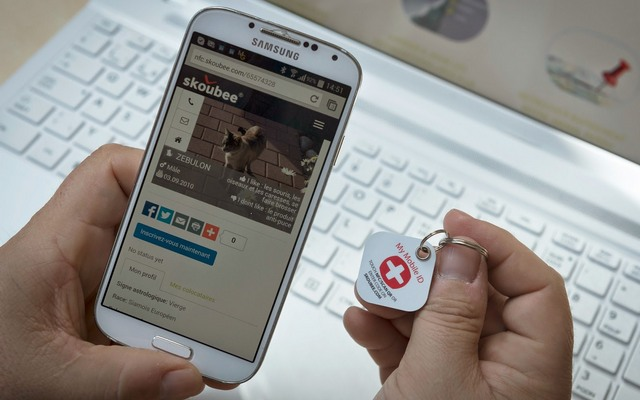 Protect Your Dog With a Digital Medal From Skoubee