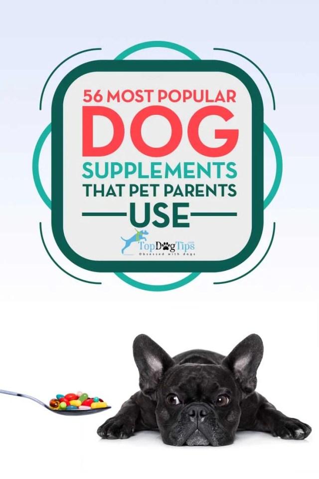 Top 56 Most Popular Dog Supplements