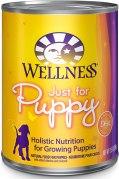 wellness puppy food