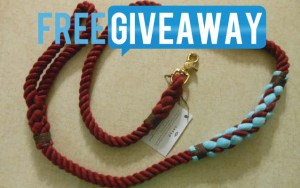 Dog Product Giveaway - Cruiser Leash from LASSO