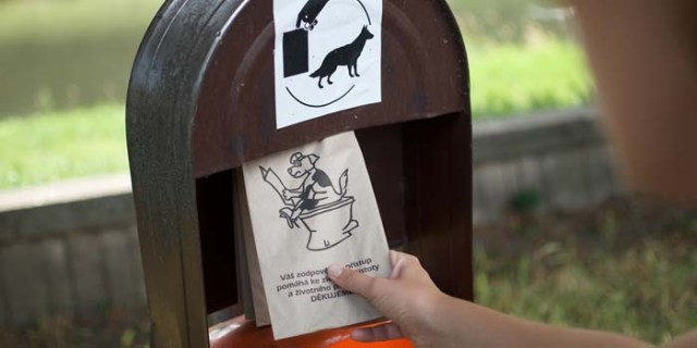 How Can We Improve Dog Fouling Problems in US and UK