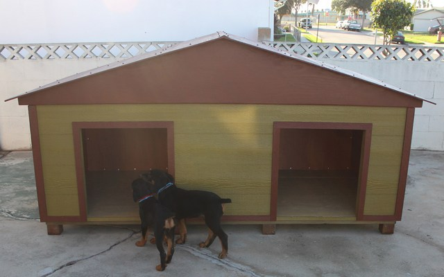 The Importance of A Quality Dog House