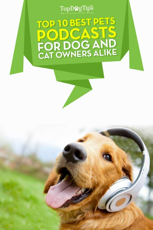 Top Ten Best Dog Podcasts for Pet Owners