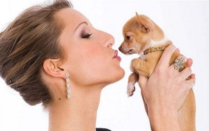 What Does Your Pet Say About Your Personality