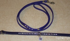 Luxe Pets Dog Leash, Collar and Charm for Dogs Giveaway