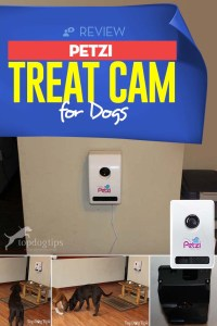 Review of Petzi Treat Cam for Dogs