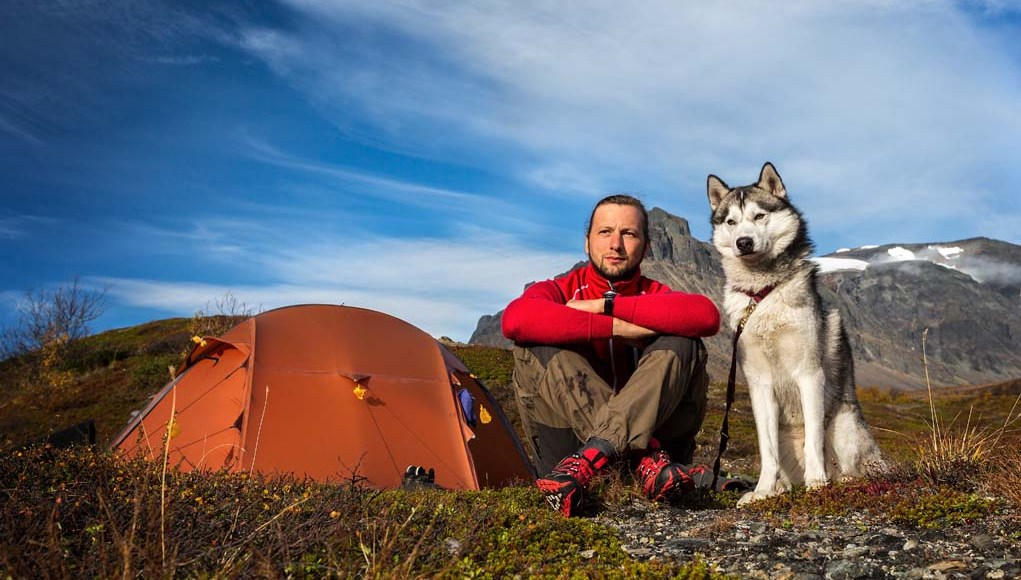 Camping With Dogs - Tips and Guidelines