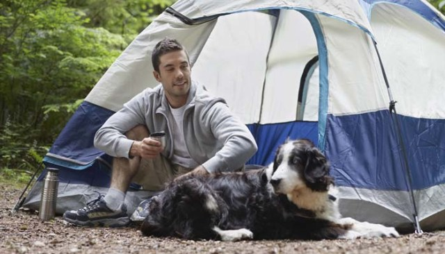 Camping with dogs in a tent outdoors