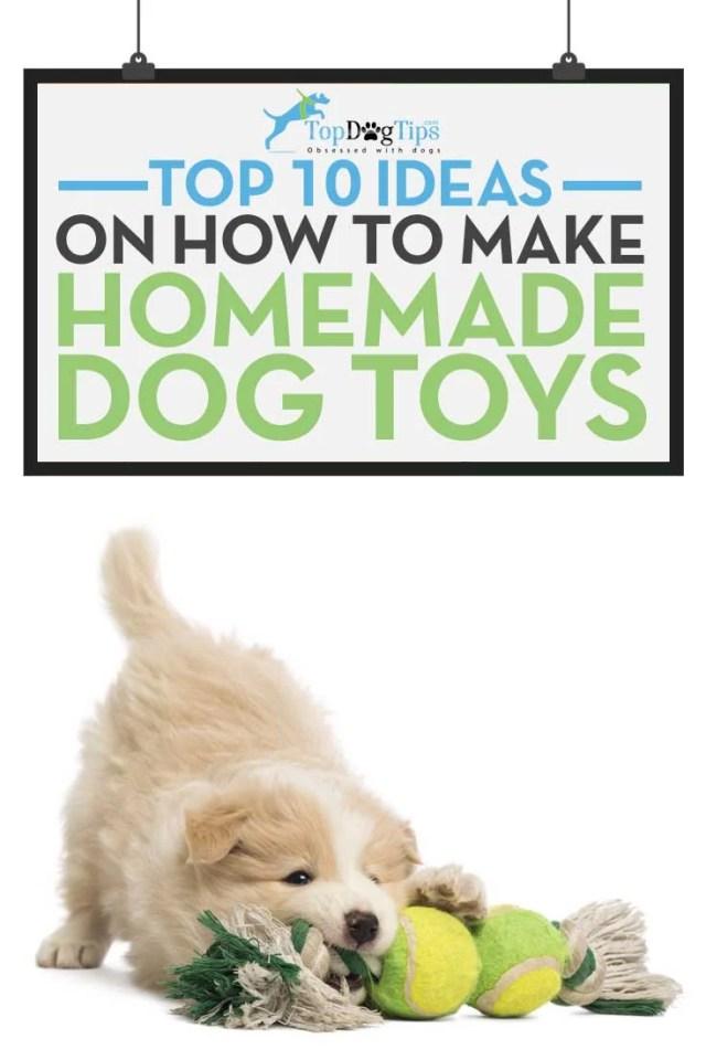 Ideas for Homemade Dog Toys