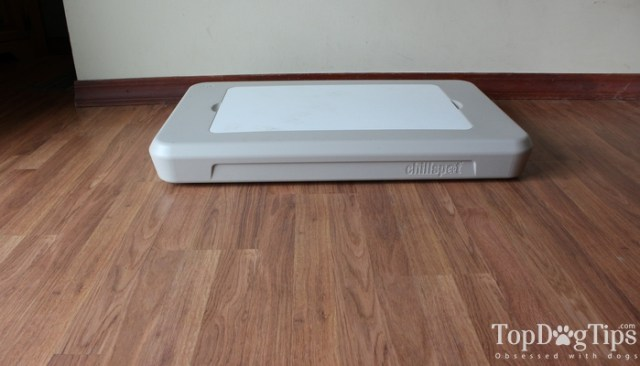 Chillspot Dog Cooling Unit Review