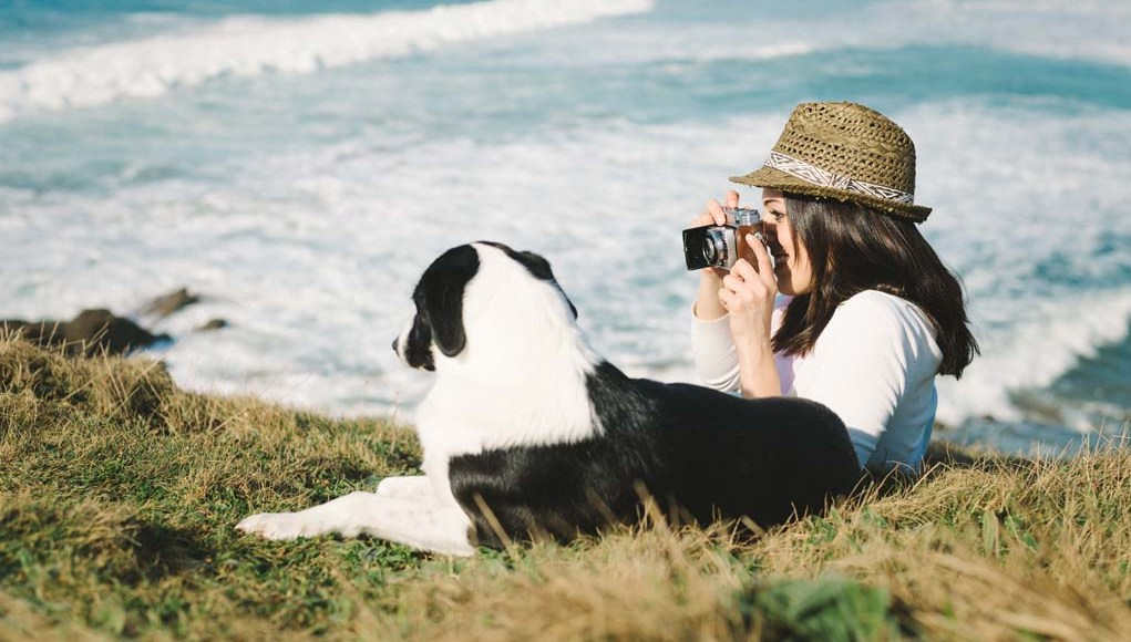 How to Take Great Photos of Your Dog