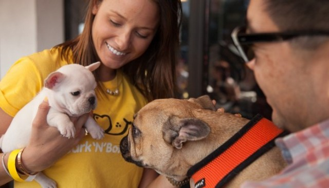 New App Lets Lonely Humans Borrow Dogs Free of Charge