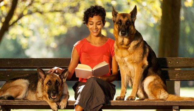 The Benefits of Hiring a Pet Sitter Interview