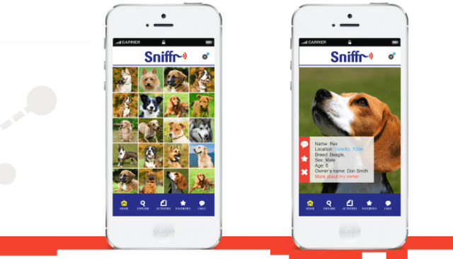 Use This App to Let Your Dog Sniff Out Friends On Social Media