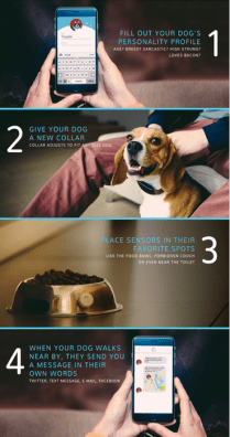 With This Collar Your Dog Can Tweet Messages About His Day