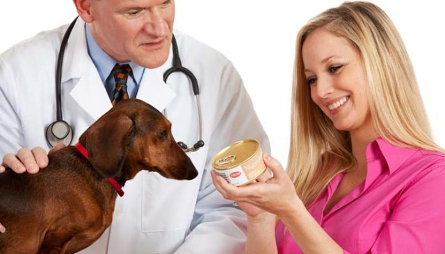 Canned Dog Food - Types of Dog Food