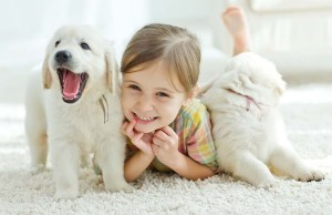 Dogs and A Kid Book of DOG BREEDS
