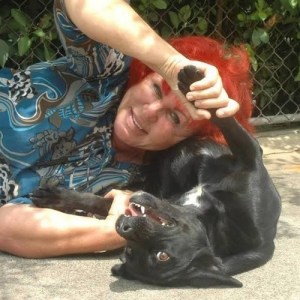 Woman Sacrifices Everything to Save Hundreds of Dogs in Need