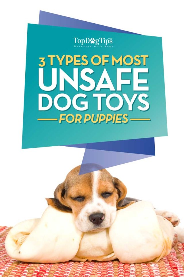 3 Most Unsafe Dog Toys for Puppies