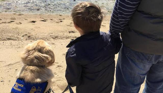 Boy Suffering From Downs Syndrome and Autism Relies on Service Dog