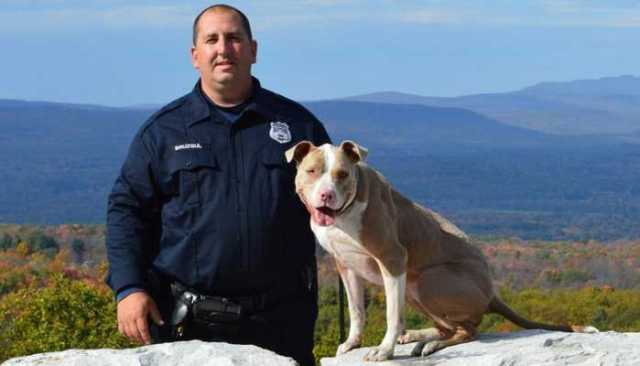 This Pit Bull Just Made History