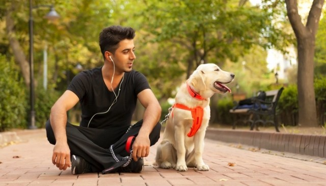 Best Dog Podcasts for Pet Owners