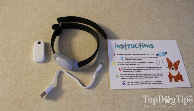 Spot Collar for Dogs Review