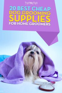 Best Cheap Dog Grooming Supplies for Pet Groomers