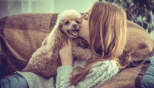 Best Dog Breeds for Women With Allergies