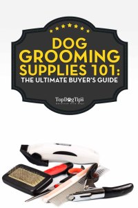 Dog Grooming Supplies Guide