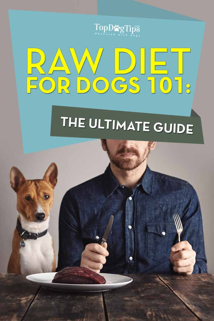 Raw Diet for Dogs 101